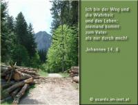 Jesus: ICH BIN der Weg, die Wahrheit und das Leben, niemand kommt zum Vater als nur durch mich. Die Bibel: Johannes 14,6