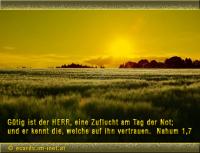 Nahum 1,7 Gütig ist der Herr, eine Zuflucht am Tag der Not; und er kennt die, welche auf ihn vertrauen.