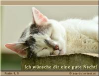 Ich wünsche dir eine gute Nacht! Psalm 4, 9 Ich werde mich in Frieden niederlegen und schlafen; denn du allein, HERR, lässt mich sicher wohnen.