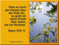 Psalm 103,11 Denn so hoch der Himmel über der Erde ist, so groß ist seine Gnade über denen, die ihn fürchten.