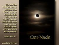 Gute Nacht Jesaja 40,31 ... aber die auf den HERRN harren, kriegen neue Kraft, dass sie auffahren mit Flügeln wie Adler, dass sie laufen und nicht matt werden, dass sie wandeln und nicht müde werden.