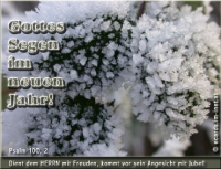 Gottes Segen im neuen Jahr! Psalm 100, 2 Dient dem HERRN mit Freuden, kommt vor sein Angesicht mit Jubel!