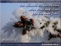 Ich wünsche dir von Herzen alles Liebe und Gute für das neue Jahr! Psalm 27, 1 Der HERR ist mein Licht und mein Heil, vor wem sollte ich mich fürchten? Der HERR ist meines Lebens Kraft, vor wem sollte mir grauen?
