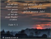 Ich wünsche dir von Herzen ein gutes neues Jahr! Psalm 9, 2 Ich will den HERRN loben von ganzem Herzen, ich will alle deine Wunder erzählen.