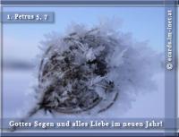 Gottes Segen und alles Liebe im neuen Jahr! 1. Petrus 5, 7 Alle eure Sorge werft auf ihn; denn er sorgt für euch.