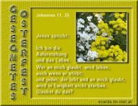 Gesegnetes Osterfest Johannes 11,25 Jesus spricht: Ich bin die Auferstehung und das Leben. Wer an mich glaubt, wird leben, auch wenn er stirb.