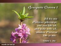 Gesegnete Ostern! Galater 2,20a Ich bin mit Christus gekreuzigt; und nun lebe ich, aber nicht mehr ich, sondern Christus lebt in mir.