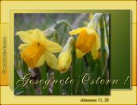 Johannes 11,25 Jesus spricht: Ich bin die Auferstehung und das Leben. Wer an mich glaubt, wird leben, auch wenn er stirb.