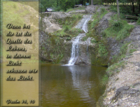 Psalm 36,10 Denn bei dir ist die Quelle des Lebens, in deinem Licht schauen wir das Licht.