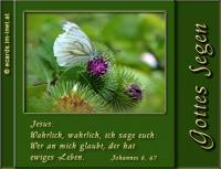 Johannes 6,47 Wahrlich, wahrlich, ich sage euch: Wer an mich glaubt, der hat ewiges Leben.