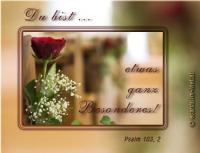 Du bist ... etwas ganz Besonderes! Psalm 103,2 Lobe den HERRN, meine Seele, und vergiss nicht, was er dir Gutes getan hat!