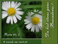 Du bist etwas ganz Besonderes! Psalm 20,5 Er gebe dir, was dein Herz begehrt, und lasse alle deine Vorhaben gelingen!