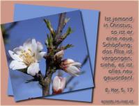 2. Korinther 5,17 Darum: Ist jemand in Christus, so ist er eine neue Schöpfung; das Alte ist vergangen; siehe, es ist alles neu geworden!