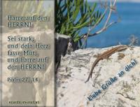 Liebe Grüße an dich! Psalm 27,14 Harre auf den HERRN! Sei stark und dein Herz fasse Mut, und harre auf den HERRN!