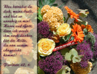 Psalm 42,6 Was betrübst du dich, meine Seele, und bist so unruhig in mir? Harre auf Gott, denn ich werde ihm noch danken für die Rettung, die von seinem Angesicht kommt!