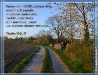 Psalm 86,11 Weise mir, HERR, deinen Weg, damit ich wandle in deiner Wahrheit; richte mein Herz auf das Eine, dass ich deinen Namen fürchte!