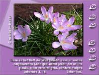 Für DICH Johannes 3,16 Denn so [sehr] hat Gott die Welt geliebt, dass er seinen eingeborenen Sohn gab, damit jeder, der an ihn glaubt, nicht verlorengeht, sondern ewiges Leben hat.