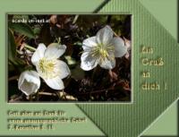 Ein Gruß an dich! 2. Korinther 9,15 Gott aber sei Dank für seine unaussprechliche Gabe!