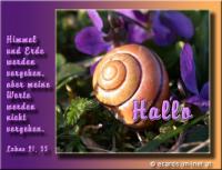 Hallo Lukas 21,33 Himmel und Erde werden vergehen, aber meine Worte werden nicht vergehen.