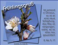Frühlingsgruß 2. Korinther 5, 17 Ist jemand in Christus, so ist er eine neue Schöpfung; das Alte ist vergangen; siehe, es ist alles neu geworden!