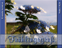 Frühlingsgruß Psalm 118,24 Dies ist der Tag, den der HERR gemacht hat; wir wollen uns freuen und fröhlich sein in ihm!
