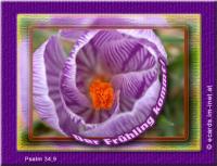 Der Frühling kommt! Psalm 34,9 Schmeckt und seht, wie freundlich der HERR ist; wohl dem, der auf ihn traut!