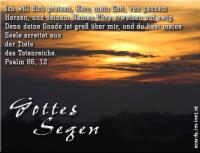 Gottes Segen Psalm 86,12 Ich will dich preisen, Herr, mein Gott, von ganzem Herzen, und deinem Namen Ehre erweisen auf ewig.