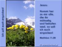Matthäus 11,28 Kommt her zu mir alle, die ihr mühselig und beladen seid, so will ich euch erquicken!