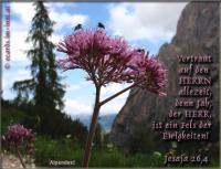 Jesaja 26,4 Vertraut auf den HERRN allezeit, denn Jah, der HERR, ist ein Fels der Ewigkeiten!
