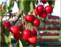 Süße Grüße und einen schönen Sommer. Psalm 34,9 Schmeckt und seht, wie freundlich der HERR ist; wohl dem, der auf ihn traut!