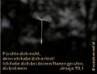 Jesaja 43,1 Fürchte dich nicht, denn ich habe dich erlöst! Ich habe dich bei deinem Namen gerufen; du bist mein.