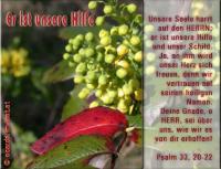 Er ist unsere Hilfe Psalm 33, 20-22 Unsere Seele harrt auf den HERRN; er ist unsere Hilfe und unser Schild. Ja, an ihm wird unser Herz sich freuen, denn wir vertrauen auf seinen heiligen Namen. Deine Gnade, o HERR, sei über uns, wie wir es von dir erhoffen!