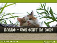Hallo - Wie geht es dir? Psalm 118,24 Dies ist der Tag, den der HERR gemacht hat; wir wollen uns freuen und fröhlich sein in ihm!
