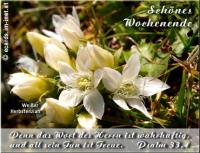 Schönes Wochenende Psalm 33,4 Denn das Wort des HERRN ist wahrhaftig, und all sein Tun ist Treue.