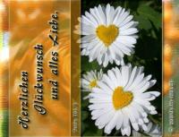 Herzlichen Glückwunsch und alles Liebe. Psalm 103,8 Barmherzig und gnädig ist der HERR, geduldig und von großer Güte.