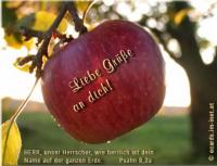 Liebe Grüße an dich! Psalm 8,2a HERR, unser Herrscher, wie herrlich ist dein Name auf der ganzen Erde