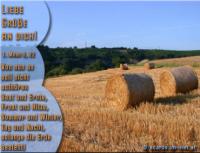 LIEBE GRÜSSE AN DICH! 1. Mose 8,22 Von nun an soll nicht aufhören Saat und Ernte, Frost und Hitze, Sommer und Winter, Tag und Nacht, solange die Erde besteht!