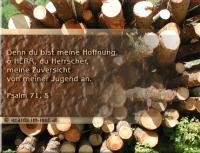 Psalm 71,5 Denn du bist meine Hoffnung, o HERR, du Herrscher, meine Zuversicht von meiner Jugend an.