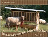 Psalm 46,2 Gott ist unsere Zuflucht und Stärke, ein Helfer, bewahrt in Nöten.